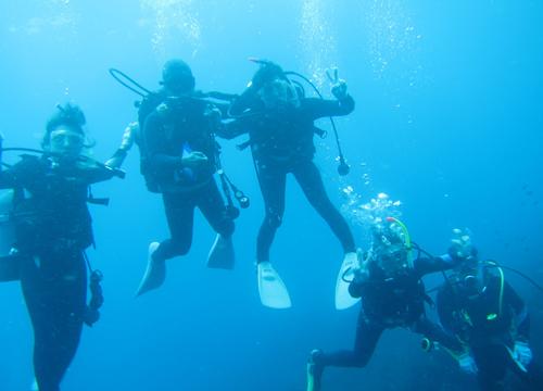 20150906伊豆 ダイビング 伊豆海洋公園 体験ダイビング