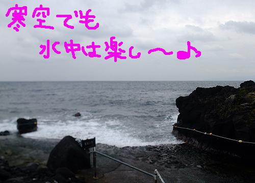 20161017伊豆 ダイビング 伊豆海洋公園