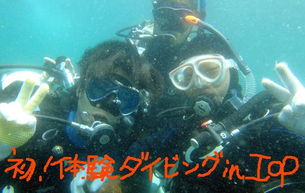 20160514伊豆 体験ダイビング 伊豆海洋公園