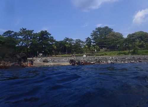 20160702伊豆 ダイビング 伊豆海洋公園