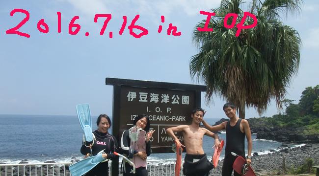 20160716伊豆 ダイビング 伊豆海洋公園 体験ダイビング (1)