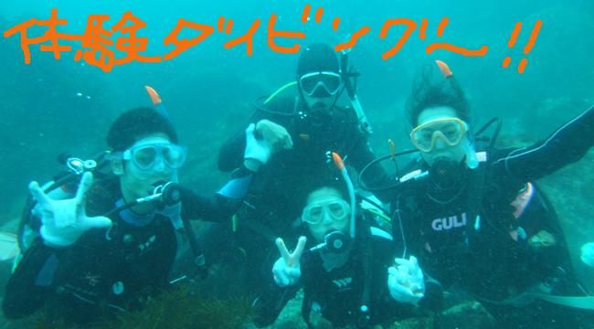 20160716伊豆 ダイビング 伊豆海洋公園 体験ダイビング (2)