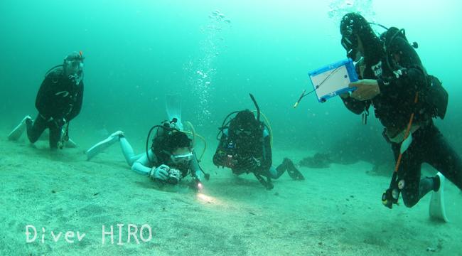 20160721伊豆 ダイビング 伊豆海洋公園 ウミテング2