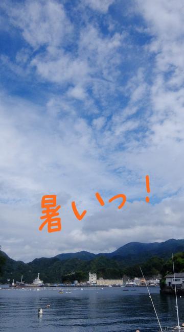 20190919伊豆 ダイビング 田子