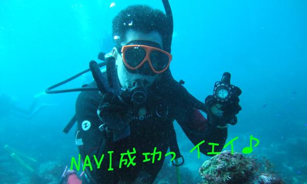 20161018伊豆 ダイビング 富戸 アドバンス3