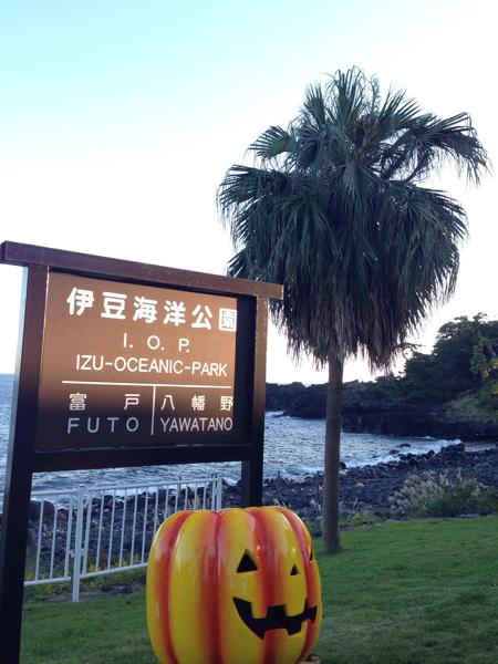 20161103伊豆 ダイビング 伊豆海洋公園 ライセンス取得2