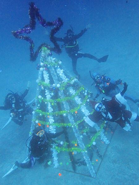 20161218伊豆 ダイビング 伊豆海洋公園 クリスマスツリー