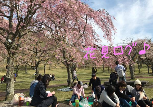 20170416伊豆 ダイビング 伊豆海洋公園3