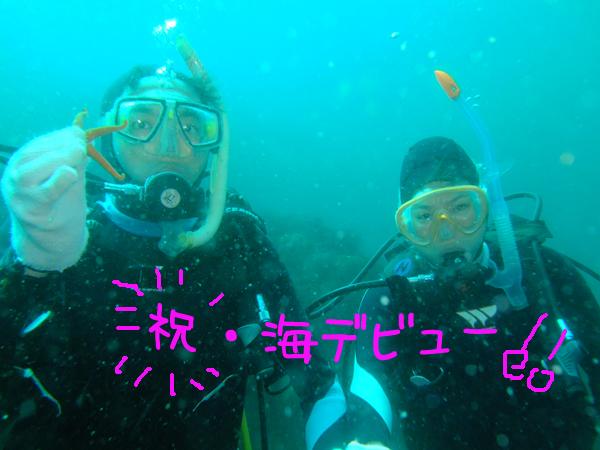 20170502伊豆 ダイビング 伊豆海洋公園 ランセンス取得