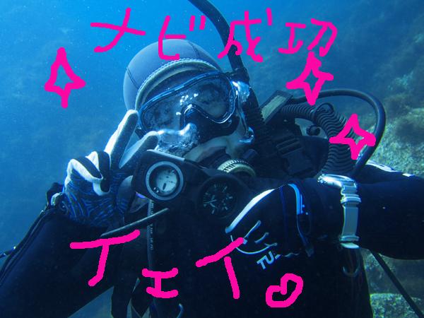 20170606伊豆 ダイビング 伊豆海洋公園 アドバンス