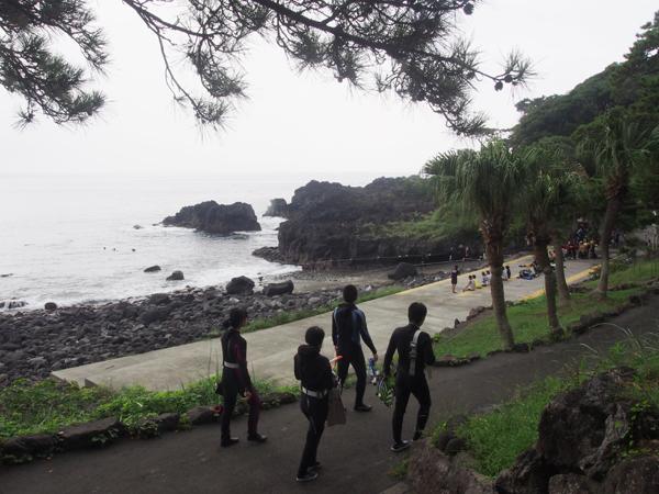 20170823伊豆 ダイビング 伊豆海洋公園