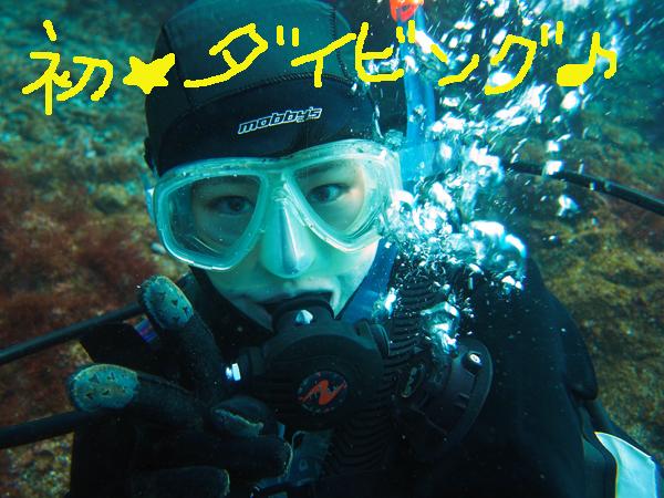 201712116伊豆 ダイビング 伊豆海洋公園 体験ダイビング