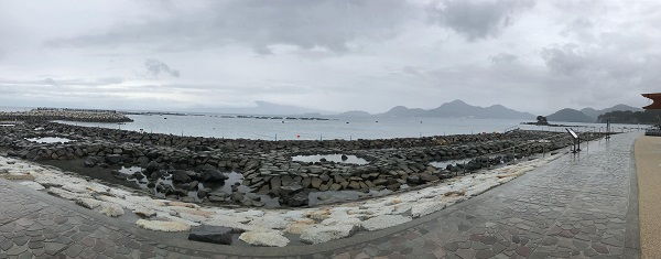 20180320伊豆 ダイビング 平沢ビーチ