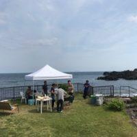 20180527伊豆 ダイビング 伊豆海洋公園7
