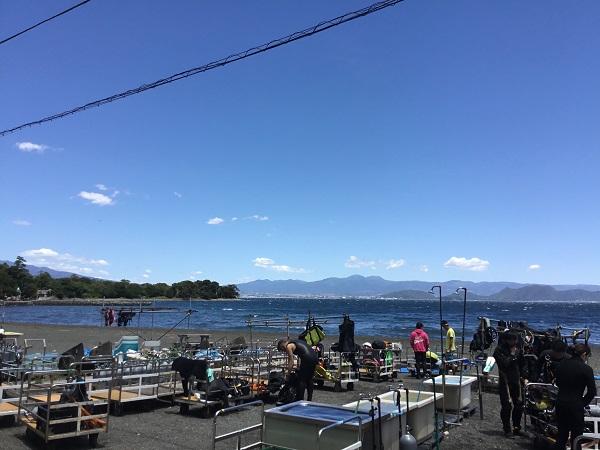 20180520伊豆 ダイビング 大瀬崎 (3)