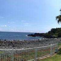 20180617伊豆 ダイビング 伊豆海洋公園