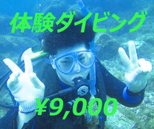 体験ダイビング ¥9000-のイメージ