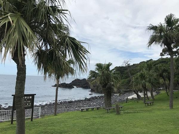 20180707伊豆 ダイビング 伊豆海洋公園