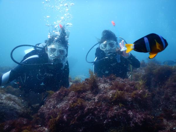 20180811伊豆 体験ダイビング 伊豆海洋公園