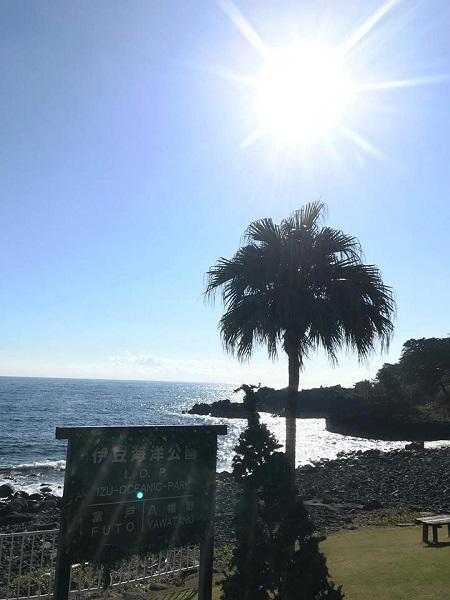 20181204伊豆 ダイビング 伊豆海洋公園 ダイビングスクール