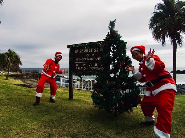 20181202伊豆 ダイビング 伊豆海洋公園