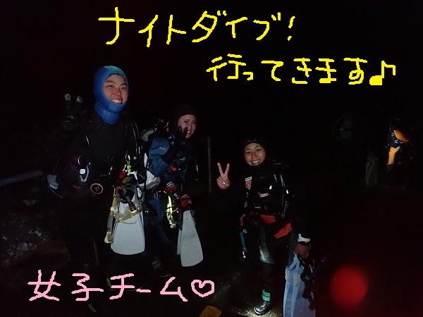 20181231 伊豆 ダイビング 伊豆海洋公園