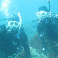 20190325 伊豆 ダイビング 体験ダイビング