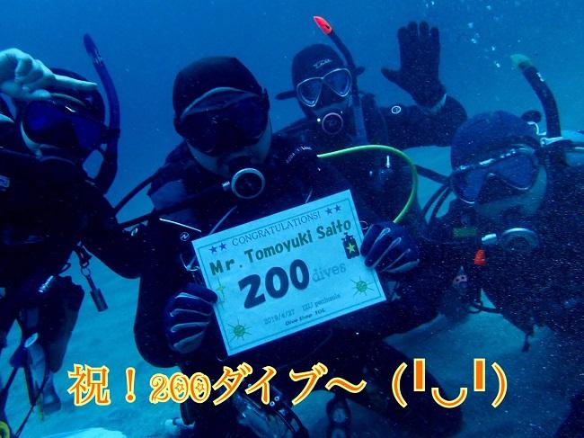 20190427伊豆 ダイビング 伊豆海洋公園