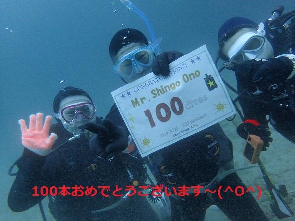 20190430伊豆 ダイビング 富戸 ダイビングスクール