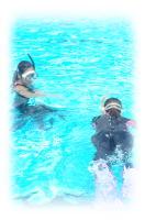 伊豆海洋公園プール