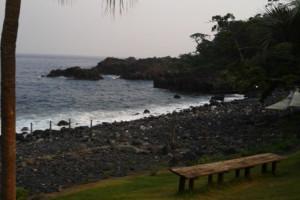 130822伊豆 海洋公園