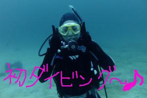 130803伊豆海洋公園OW海洋実習