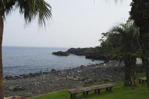130808伊豆 海洋公園1