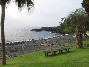 130813伊豆 海洋公園