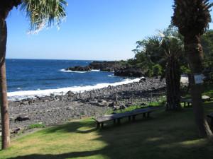 130901伊豆 海洋公園2