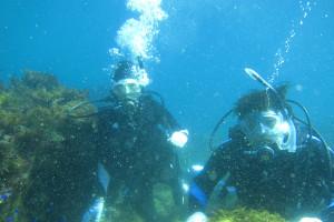 130903伊豆 海洋公園3