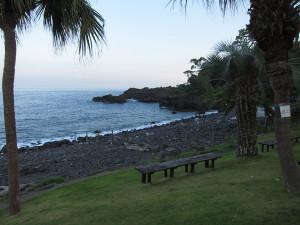 130907伊豆 海洋公園9