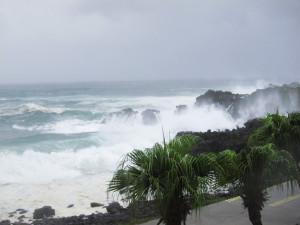 130916伊豆 海洋公園2