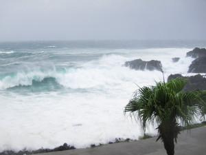 130916伊豆 海洋公園4