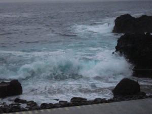 130925伊豆 海洋公園