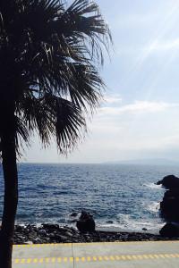 140308伊豆 海洋公園