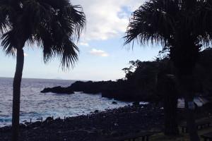 140315伊豆 海洋公園