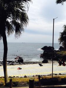 140329伊豆 海洋公園
