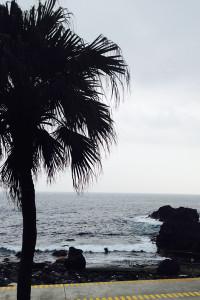 140301伊豆 海洋公園