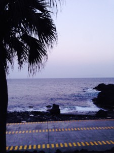 140328伊豆 海洋公園