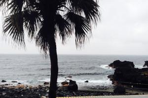 140302伊豆 海洋公園