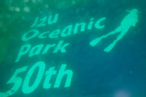 140321伊豆 海洋公園