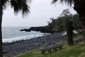140411伊豆 海洋公園