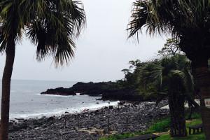 140505伊豆 海洋公園
