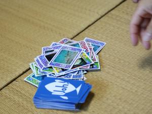 20140726伊豆 ダイビング カードゲーム